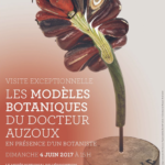 affiche belles Plantes rouen rendez-vous du 4 juin Aux Arts